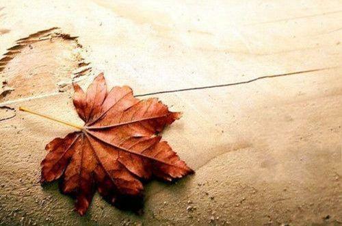 分手后难过的伤感说说:猜忌让所有人的关心都变成了别有用心