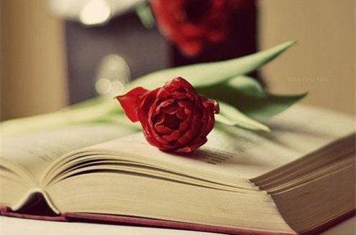写心情伤感的说说短句子