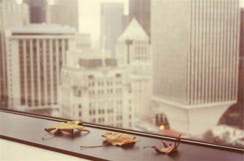 写到心窝里的伤感说说:一个人,没有很快乐,也没有很难过