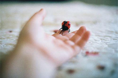 励志说说句子大全:不要失去信心,只要坚持不懈,就终会有成果的