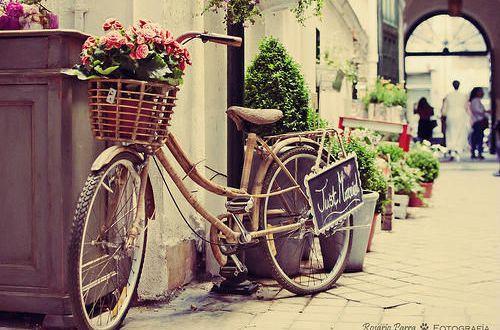 励志的说说致自己:微笑拥抱每一天,做像向日葵般温暖的女子