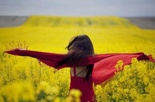 励志说说人生感悟:太阳总是新的,每天都是美好的日子
