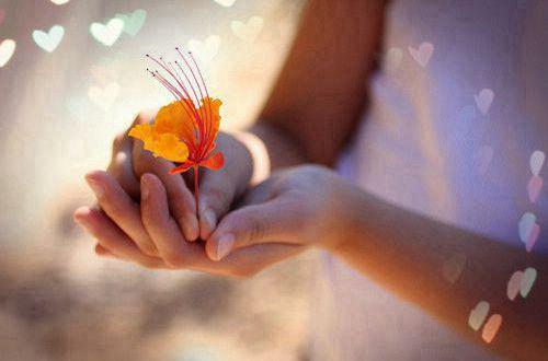 励志说说值得一看的句子:原谅别人,就是善待自己