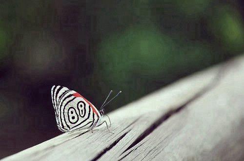 内心无奈的伤感说说:人活着真有意思。活着活着就死了