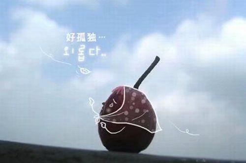 腾讯QQ说说 人生两条路,一条用来实践,一条用来遗憾