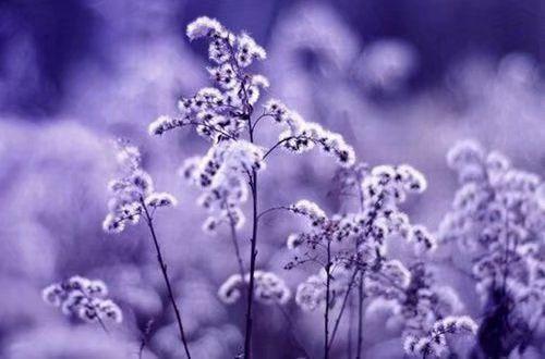 分手后的心情伤感说说:天空还是很蓝,世界也没有崩塌