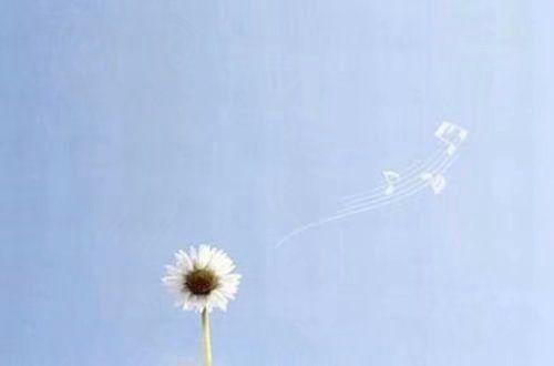 非主流超拽个人说明 承诺一旦消失爱就是一张白纸.