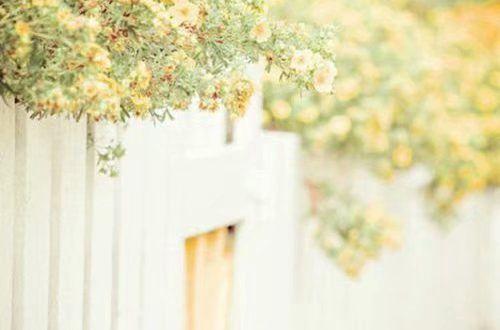 动人心弦的爱情说说:直到世界都安心,我依然不会对不起你