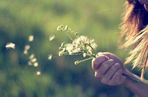 美到窒息的文艺唯美说说 你是一树一树的花开是燕在梁间呢喃